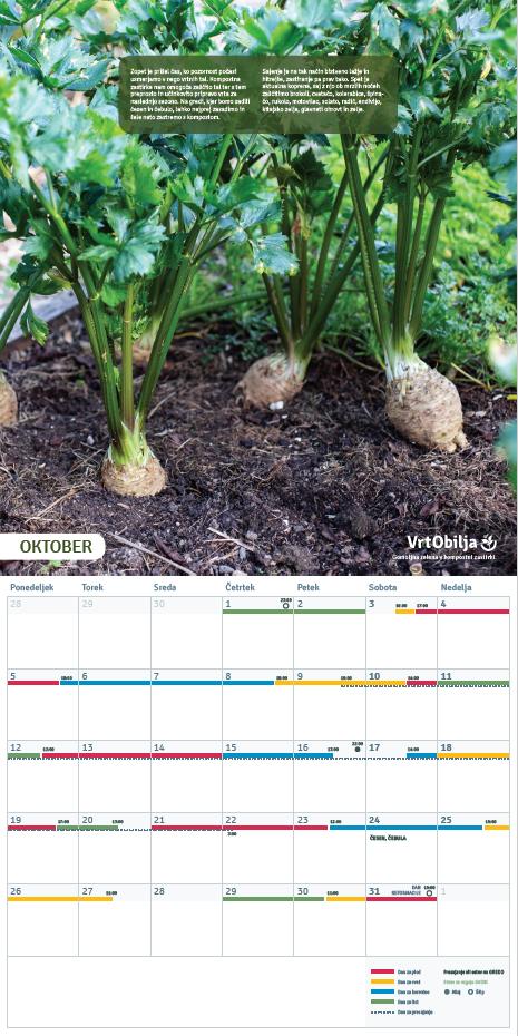 Oktober Vrtnarski koledar 2020