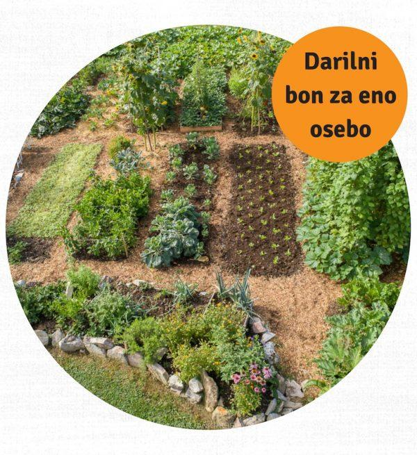 Darilni bon – Vrtnarska delavnica MVO